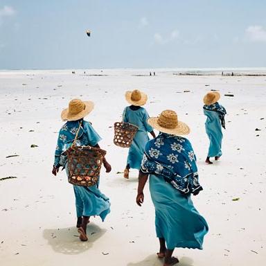 Tanzanie, grand Rift et océan